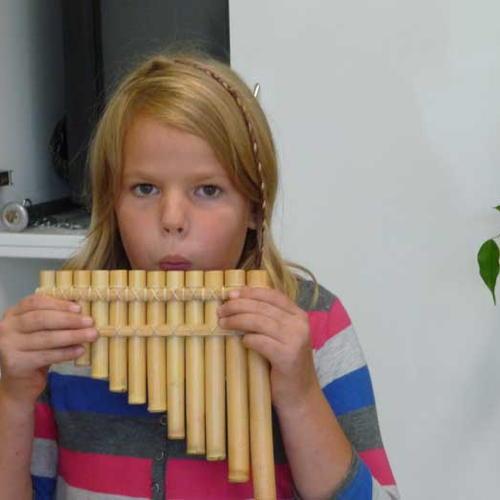 Bild zum Weblog Musikunterricht