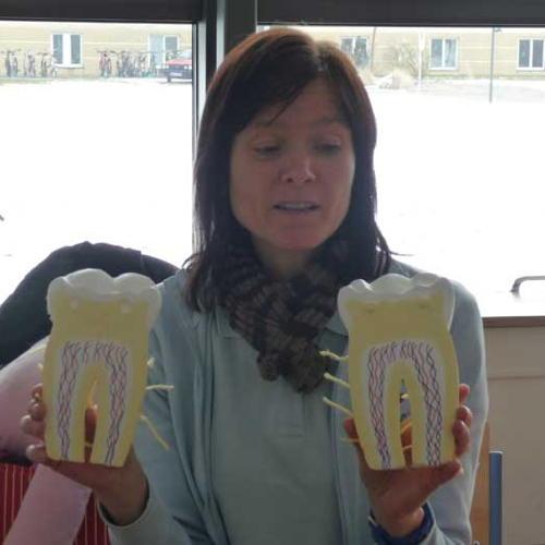 Bild zum Weblog Zahnhygiene