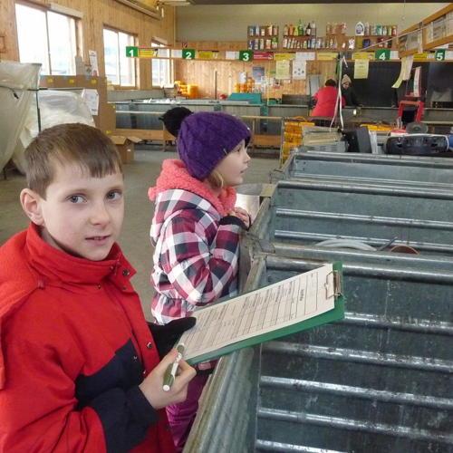 Bild zum Weblog Recyclinghof