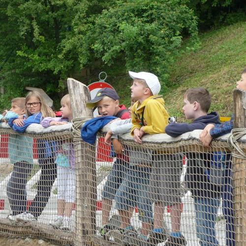 Bild zum Weblog Zoo