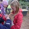 Bild zum Weblog Feldhase und Kaninchen