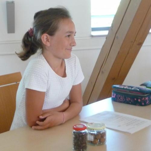 Bild zum Weblog Projekt der NMS
