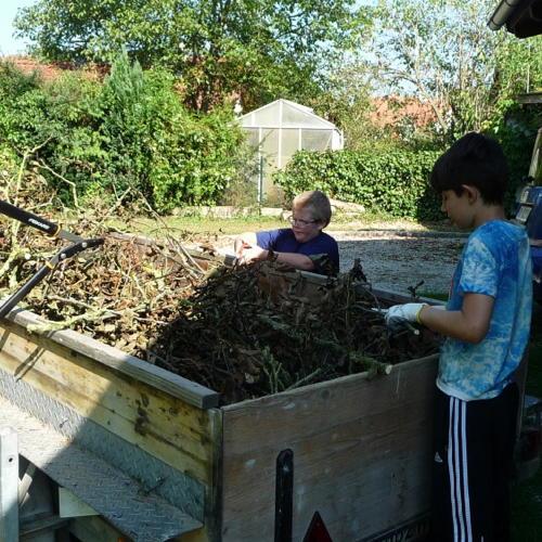 Bild zum Weblog Gartenaktion