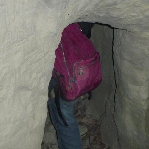 Bild zum Weblog Wandertag