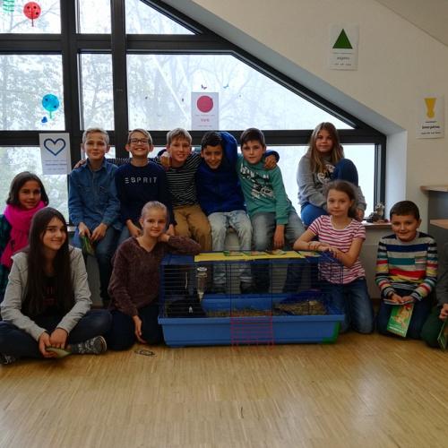 Bild zum Weblog Kleine und große Erlebnisse aus dem Schulalltag