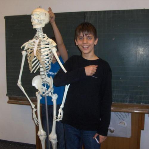 Bild zum Weblog Unser Skelett